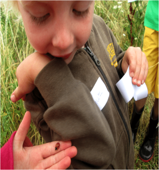 child with ladybird